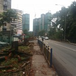Road Widening Works Jan 2018