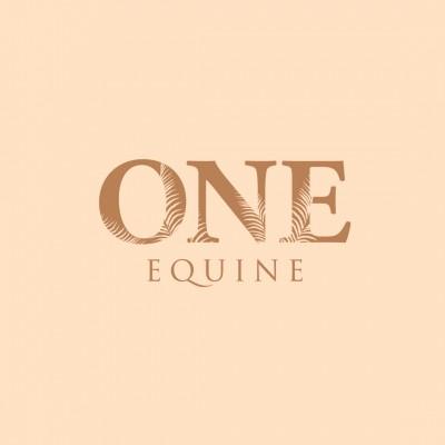 ONE EQUINE